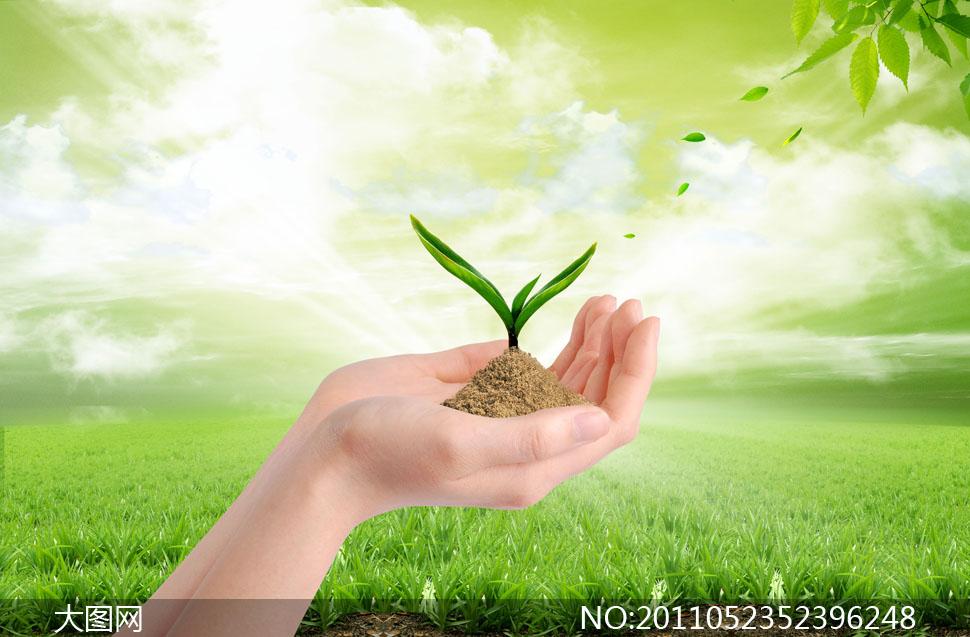 手捧着植物幼苗与草地psd分层素材