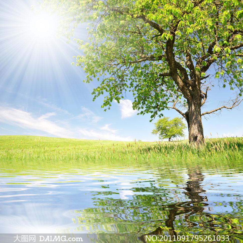 (原创文学)边城*早春的阳光图片