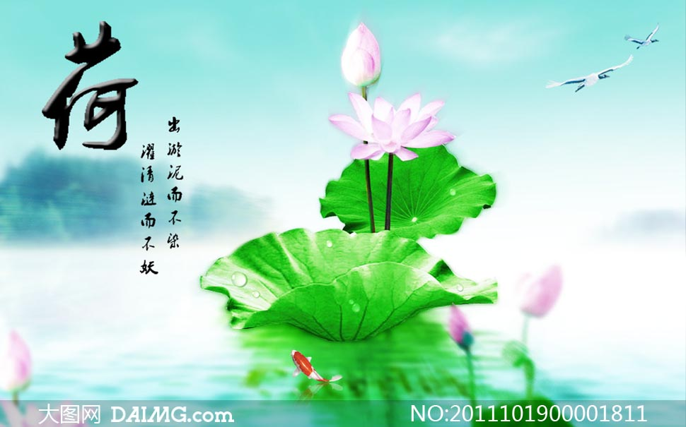 特别说明:  中国风荷花广告模板psd素材下载 关键词: 荷花荷叶莲花