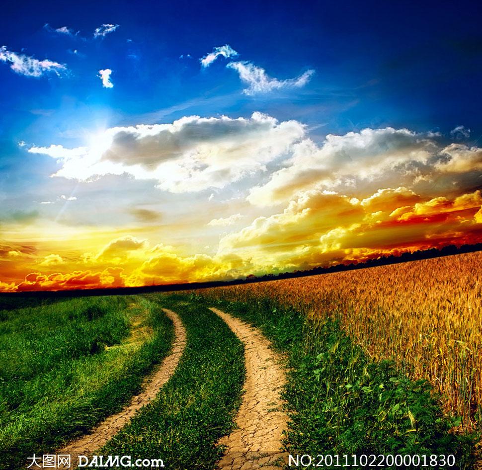 大图首页 高清图片 自然风景 > 素材信息  乡间小路高清摄影图片 素材