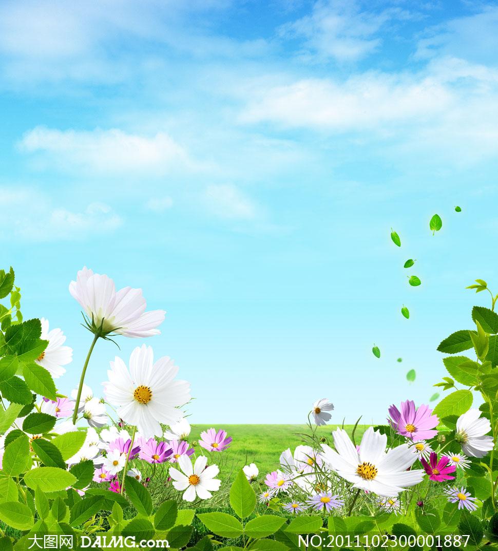 蓝天白云和鲜花摄影图片 - 大图网设计素材下载