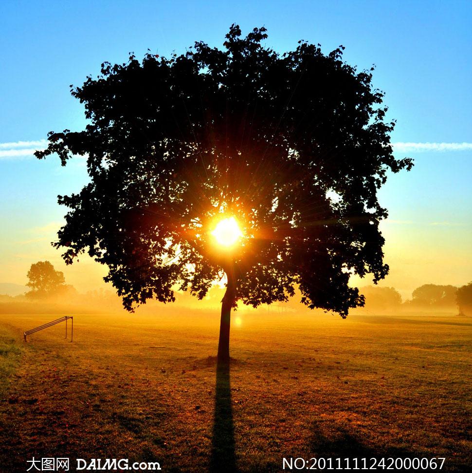 阳光风景图片下载 阳光风景打包下载 阳光风景