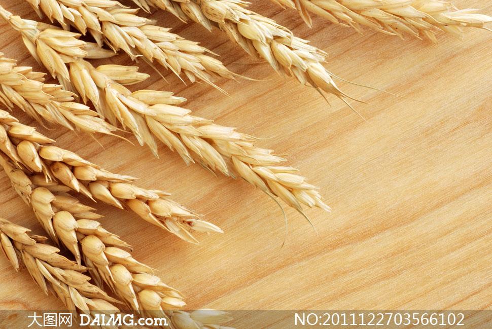 木板上的小麦穗特写高清摄影图片
