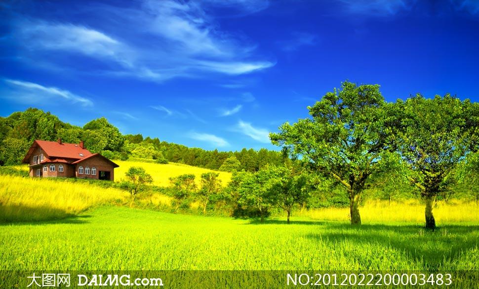 蓝天白云绿树乡村风光美丽乡村乡村小屋大