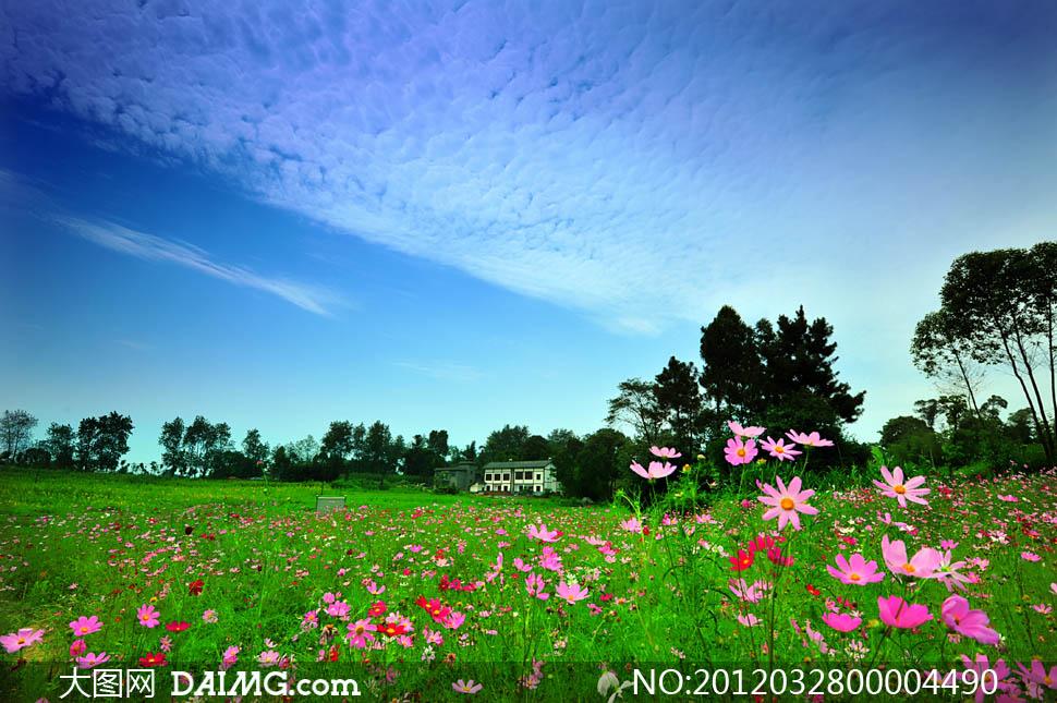 美丽乡村外景摄影图片