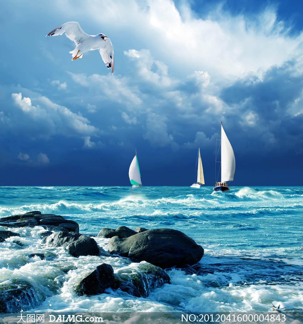 帆船远航大海蓝天白云海鸥大海风光礁石海边海岸海边风光自然风景自然