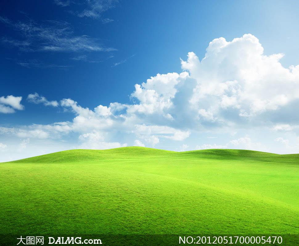 大图首页 高清图片 自然风景 > 素材信息  蓝天下绿色清新草地摄影