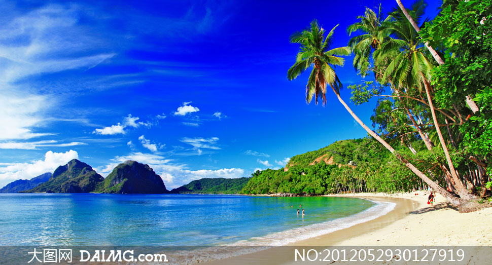 蓝天白云夏天大海椰树摄影高清图片