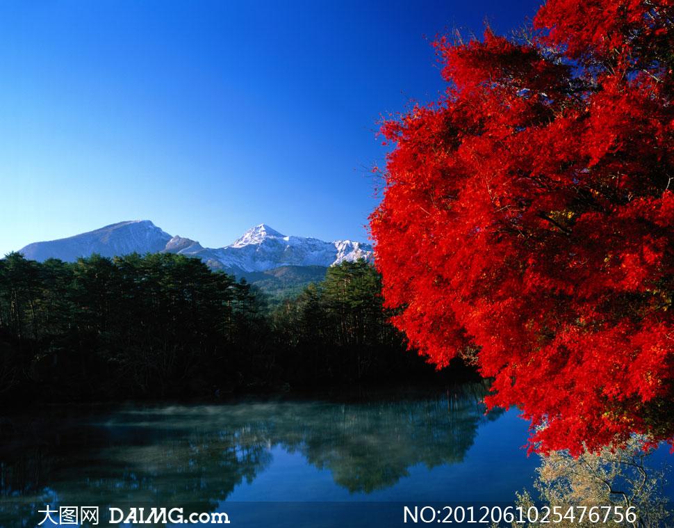 雪山树木倒影自然风景摄影高清图片