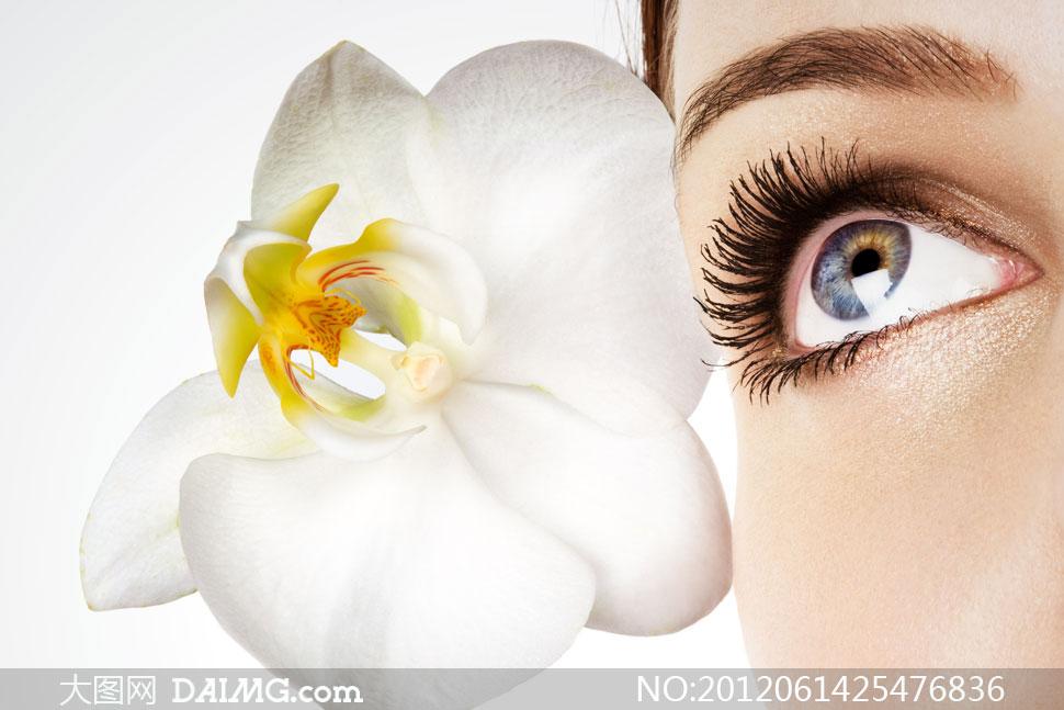 美女眼睛特写与鲜花摄影高清图片 大图网设计