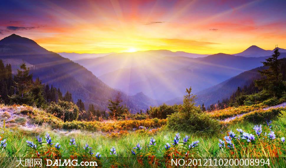 图片头像风景早晨阳光_阳光情侣风景头像