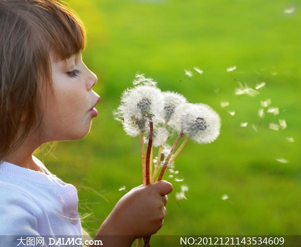 吹蒲公英的可爱小姑娘摄影高清图片